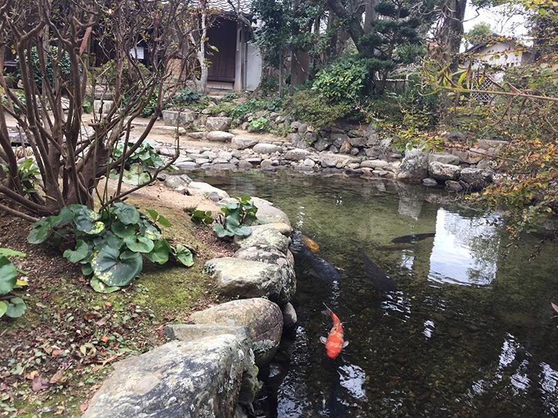 藍場川の水をまず庭の池に引き込み