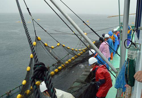 定置漁船「指月丸」