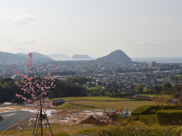 桜-015.jpg