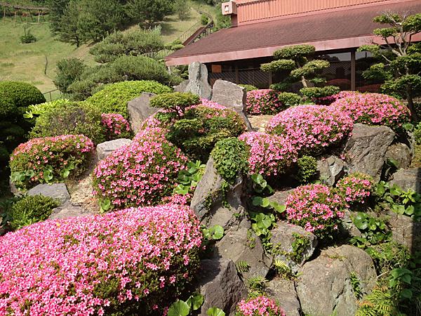 2階日本庭園