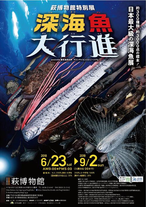 深海魚大行進-萩博物館-